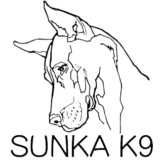 Sunka K9 Training